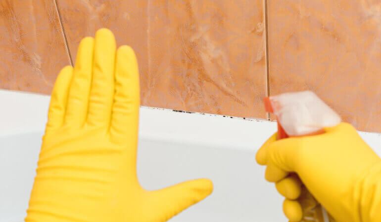 How to remove and prevent mould and mildew from walls